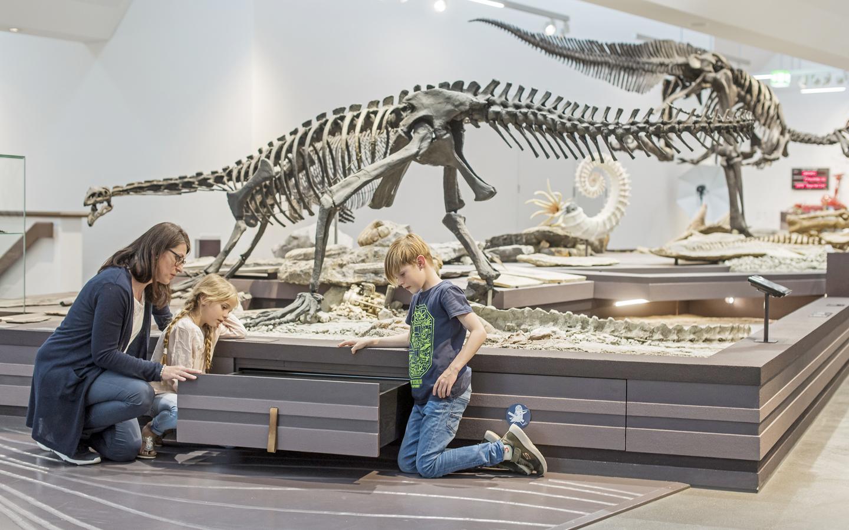nternationaler Museumstag: den