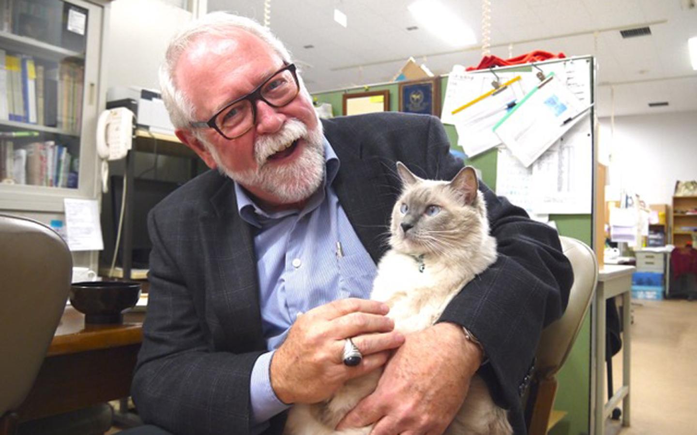 nsere Katzen: Ihr Verhalten un